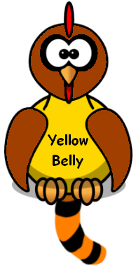 Image of a yellow bellied chicken with a tail between its legs.