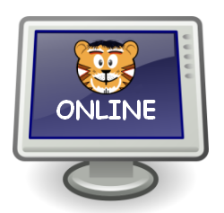 """Image of me on a computer monitor with """"ONLINE"""" written beneath me."""