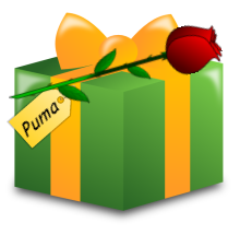 Image of the green and gold present I sent Puma.